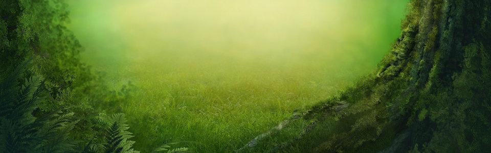 森林绿色系梦幻背景高清背景图片素材下载