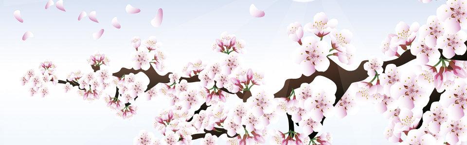 春季桃花背景