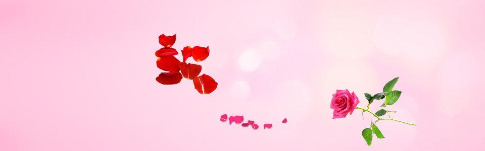 粉红色花瓣背景
