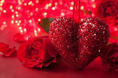 情人节红玫瑰花背景