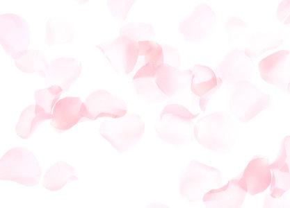 浅色粉色花瓣背景