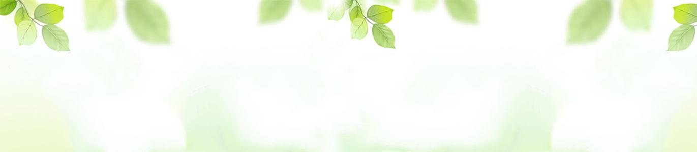 白色清新树叶女鞋背景banner