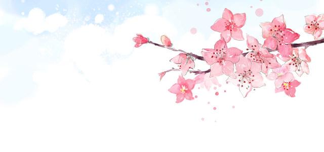 粉色桃花背景高清背景图片素材下载