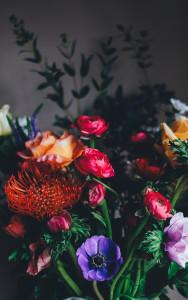 花卉背景高清背景图片素材下载