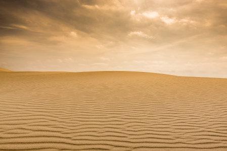 金色沙漠背景