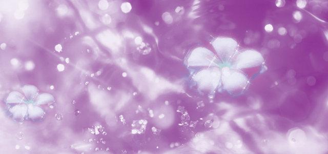 梦幻花朵背景