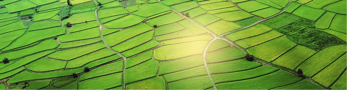 绿洲景色高清背景图片素材下载