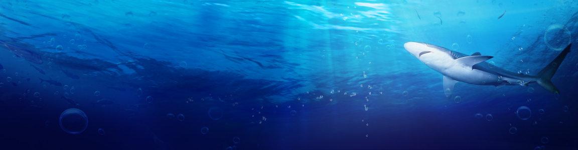 创意海底背景
