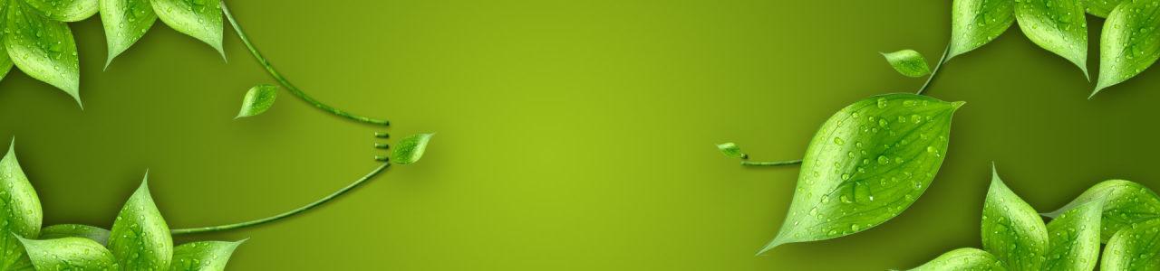 绿色banner