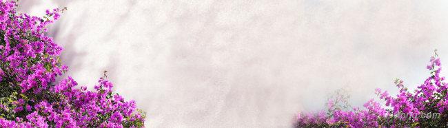 唯美花朵背景海报背景高清大图-唯美背景淡雅/清新/唯美