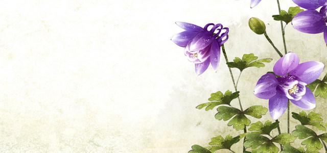 手绘鲜花背景