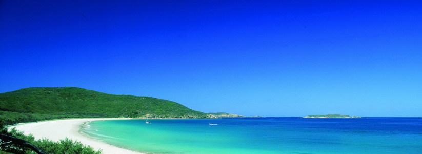 澳大利亚黄金海边风景背景高清背景图片素材下载