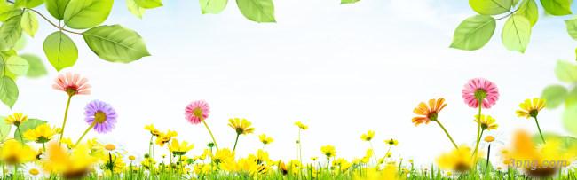 唯美花朵海报背景背景高清大图-唯美背景淡雅/清新/唯美
