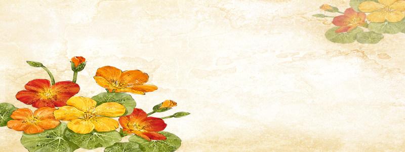 水墨花朵背景高清背景图片素材下载