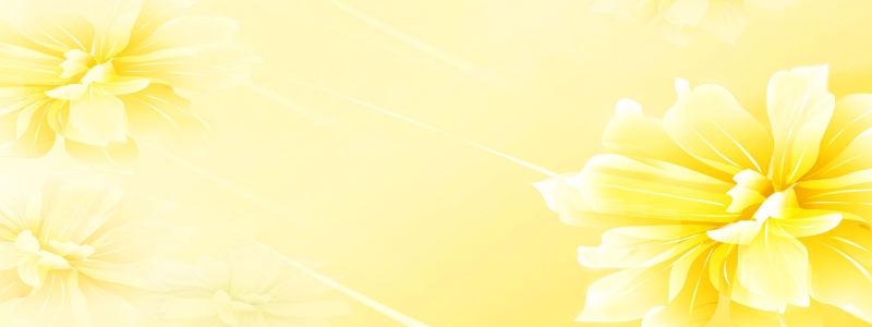 唯美黄色花朵海报背景