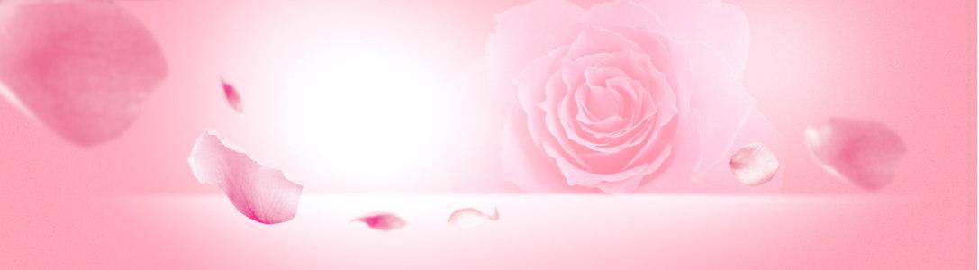 粉色玫瑰花开温馨浪漫海报背景