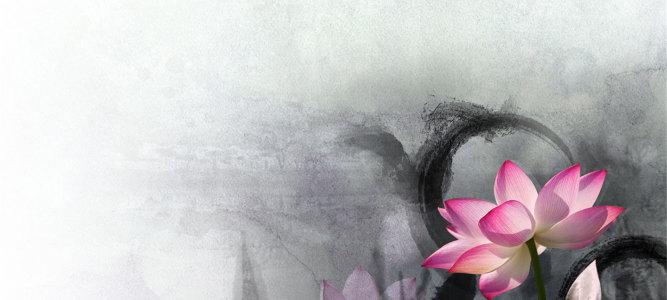 小清新素雅纯洁荷花中国风唯美高清背景
