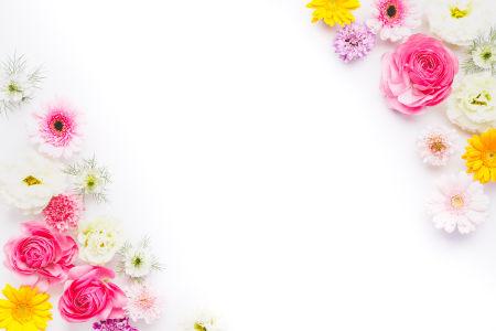 清新花朵俯拍背景