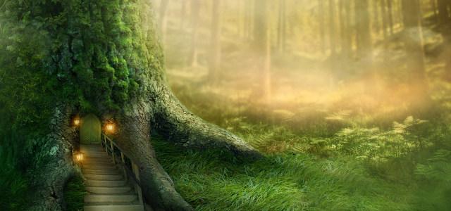 童话森林高清背景图片素材下载