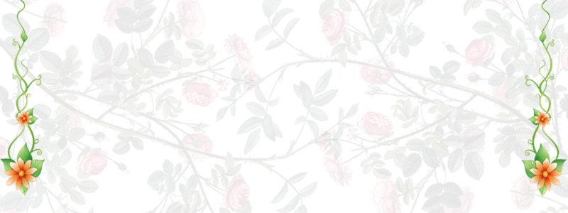 碎花淘宝广告banner 模板