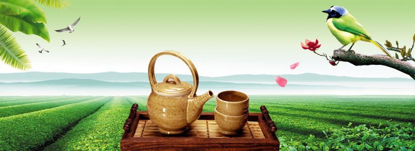 春茶banner海报背景高清背景图片素材下载
