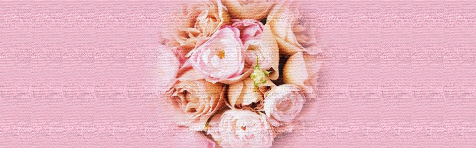唯美质感玫瑰花海报背景