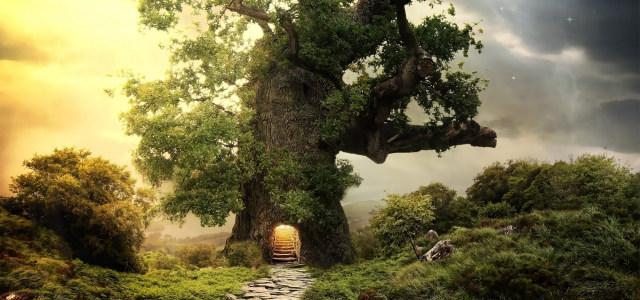 梦幻古树森树风景高清背景图片素材下载