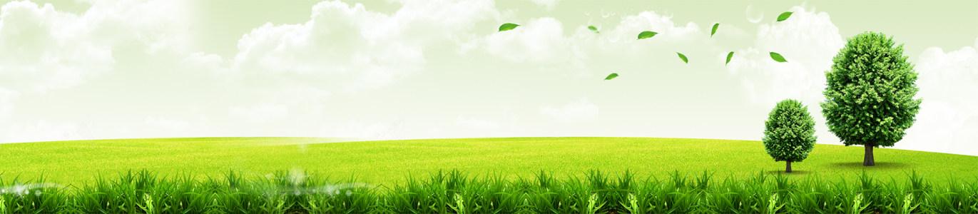 绿色健康环保背景高清背景图片素材下载
