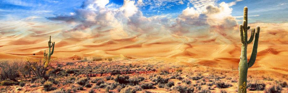 户外沙漠背景