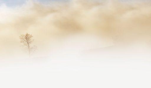 雾天天气背景