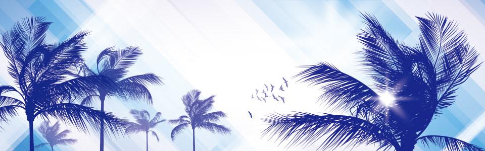 精美棕榈树banner背景高清背景图片素材下载