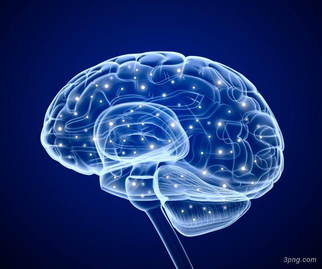 科技大脑背景背景高清大图-大脑背景底纹/肌理