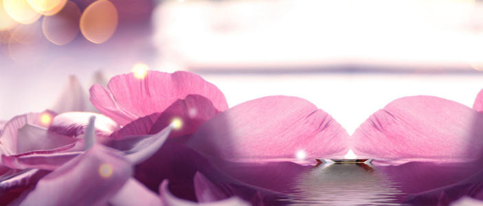 紫色花朵背景