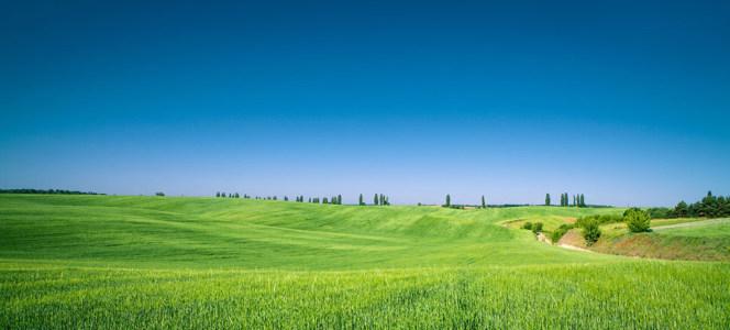 蓝天白云与望不到边的草原海报背景高清背景图片素材下载