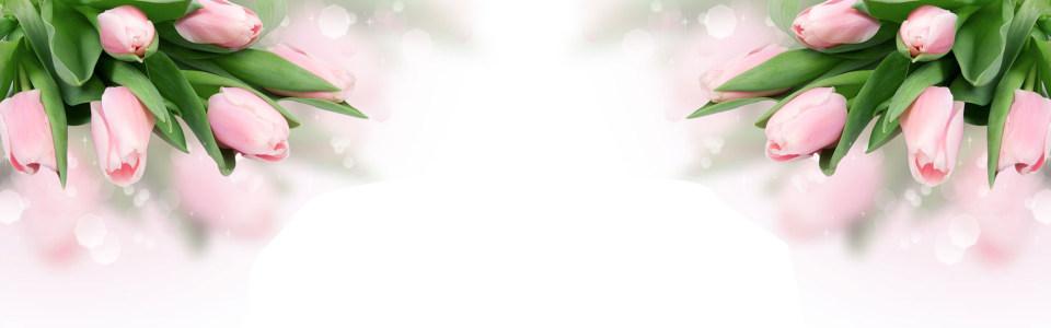 红色唯美花瓣淘宝海报背景高清背景图片素材下载