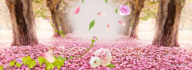 淘宝背景背景高清大图-淘宝背景鲜花