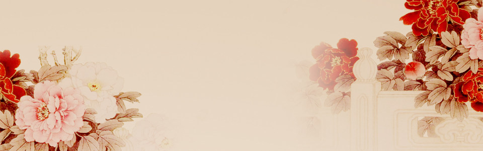 中国风牡丹背景高清背景图片素材下载