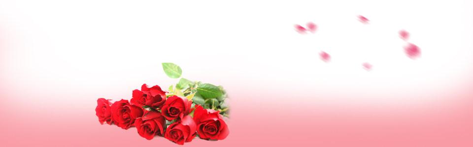 红色玫瑰花背景高清背景图片素材下载