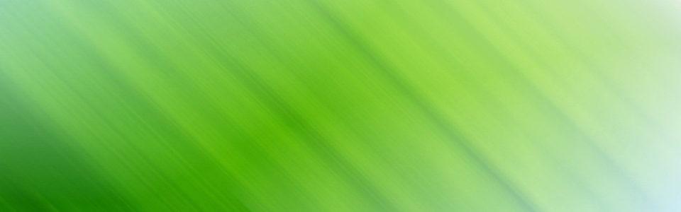 绿色模糊渐变背景banner