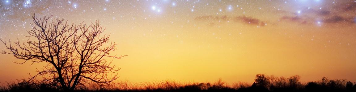 夜晚田野与梦幻星空美景