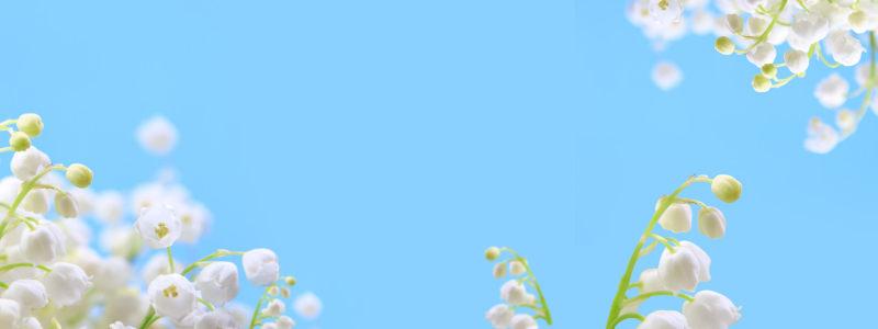 简约清新淘宝广告banner