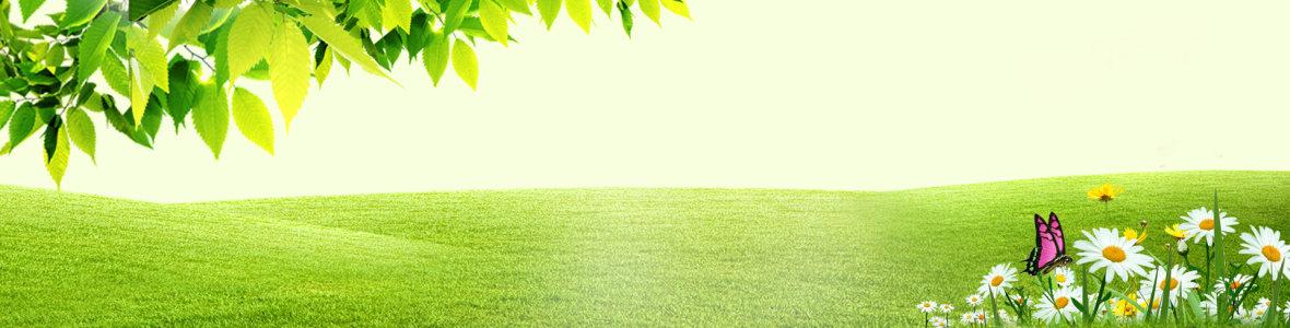 绿色风景海报高清背景图片素材下载