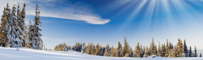 冬天雪景banner创意设计背景高清大图-雪景背景Banner海报