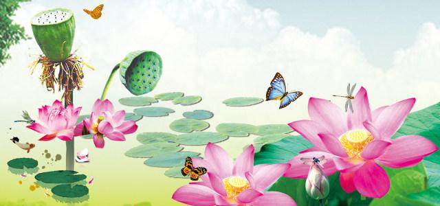 手绘荷花池背景高清背景图片素材下载
