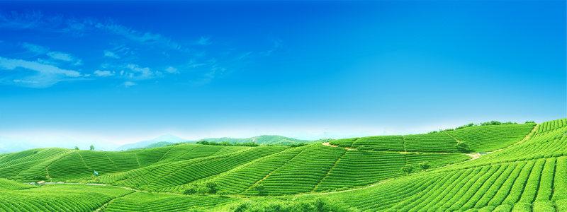 绿色农田风景海报高清背景图片素材下载