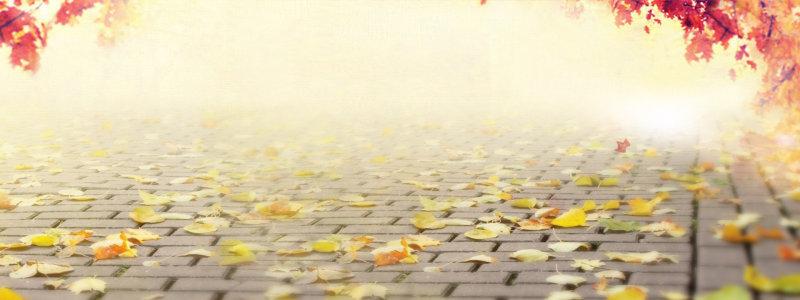 秋季户外背景高清背景图片素材下载