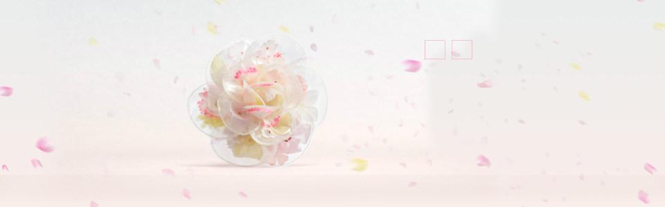 唯美花朵背景
