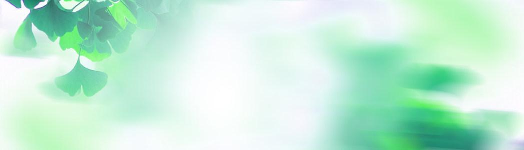 清新糖果色女包背景banner高清背景图片素材下载