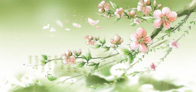 浪漫温馨梅花高清背景图片素材下载