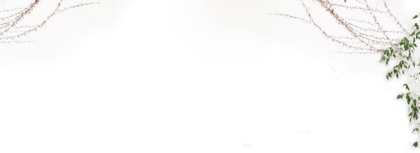 白色背景高清背景图片素材下载